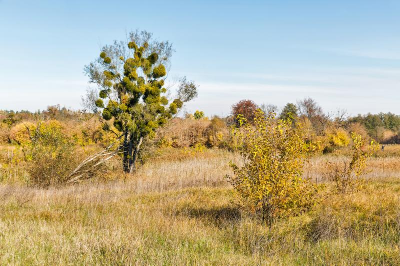 Ros river valley autumn landscape at sunset, Ukraine royalty free stock photo
