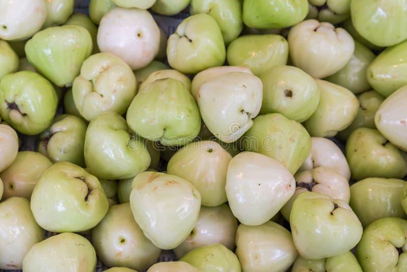 Rosa äpple eller klockafrukt royaltyfri bild
