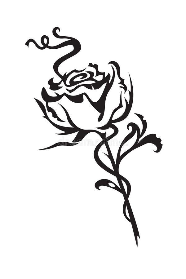 Rosa ilustração royalty free