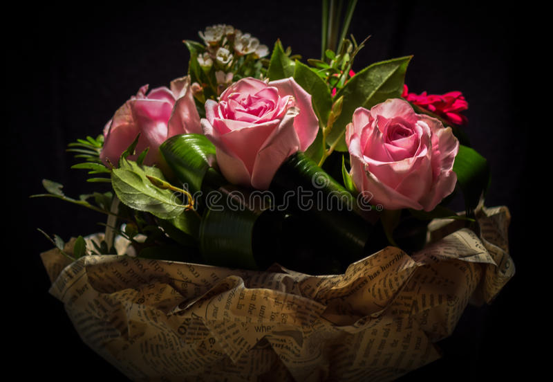 Rosa immagini stock libere da diritti