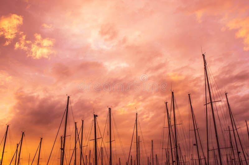Rosa Abend im Jachthafen, Maste im Himmel stockfotografie