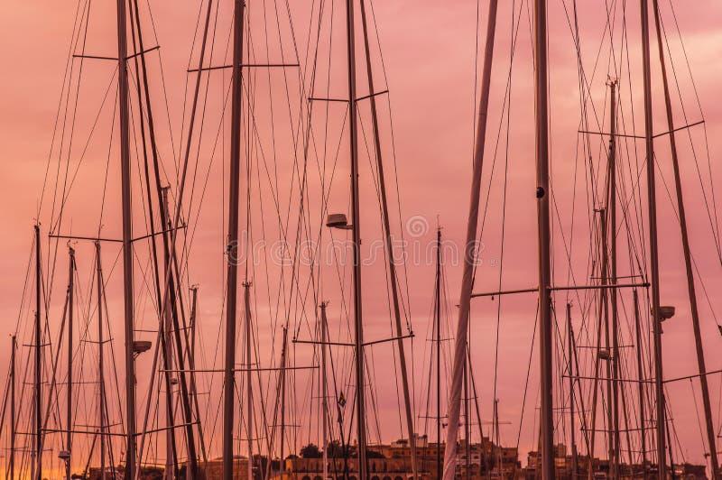 Rosa Abend im Jachthafen, Maste im Himmel lizenzfreies stockfoto