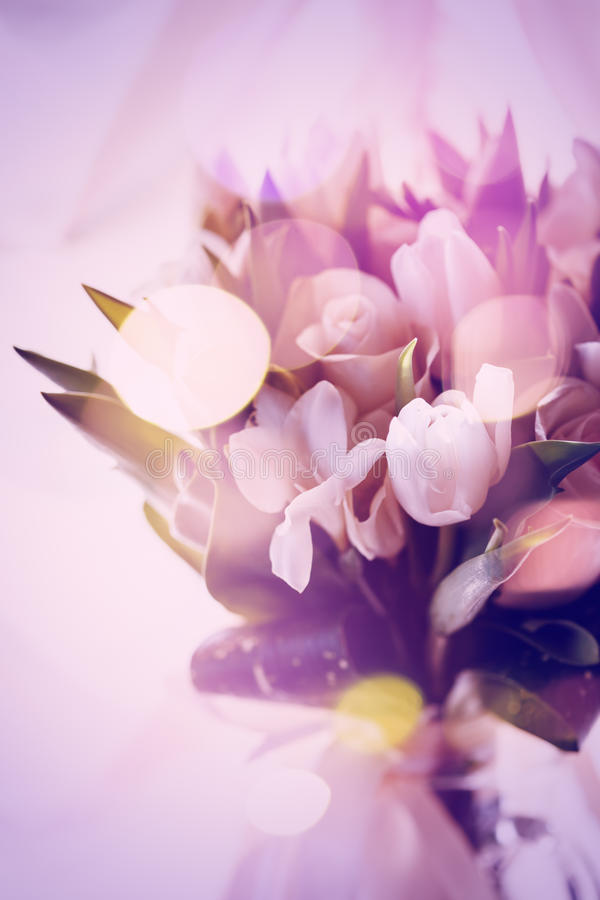 Rosa abstraktes Bild von Frühlings-Blumen stockbild