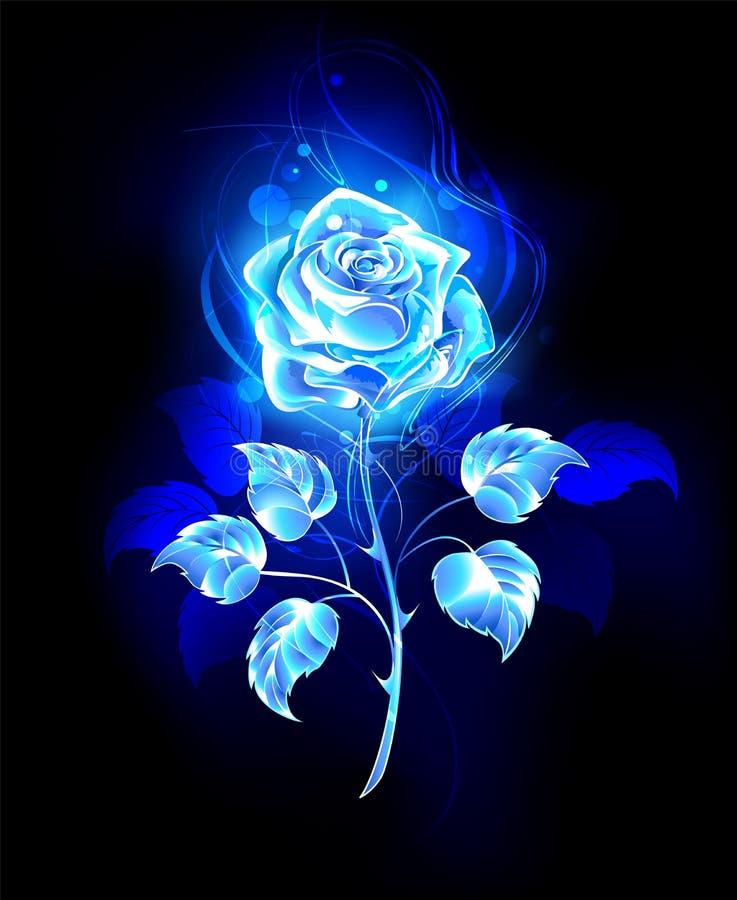 Rosa ardente do azul no fundo preto ilustração do vetor
