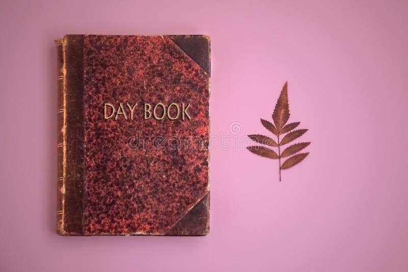 Rosa bakgrund för dagbok arkivbild