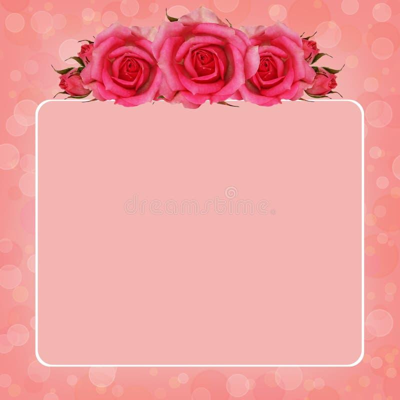 Rosa bakgrund med steg blommor royaltyfri illustrationer