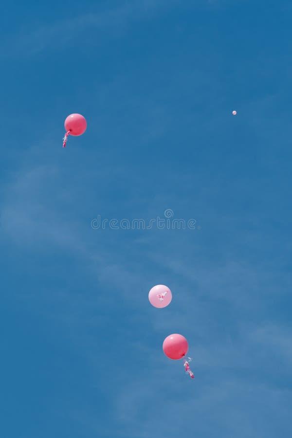 Rosa ballonger royaltyfria bilder