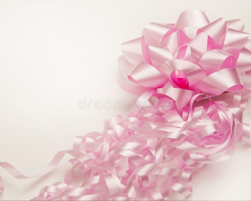 Rosa band och bow royaltyfri bild