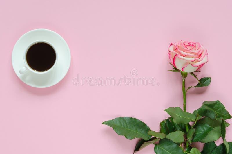Rosa blühende frische rosafarbene Blume mit Tasse Kaffee auf rosa Hintergrund lizenzfreie stockfotografie