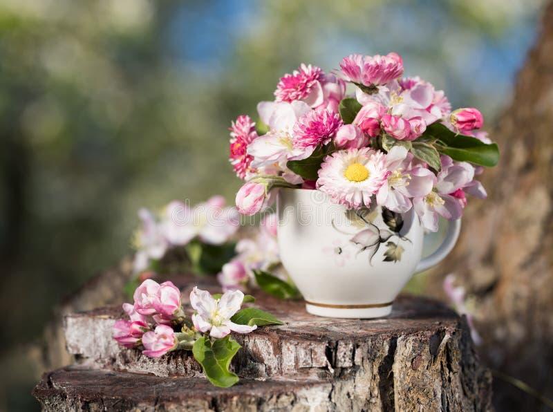 Rosa blühender Apfelbaum des Blumenstraußes stockbilder
