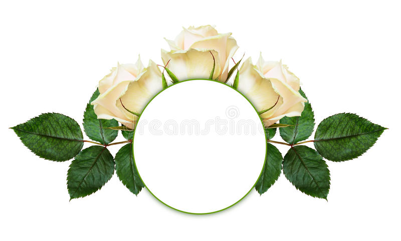 Rosa blommaordning och ram fotografering för bildbyråer