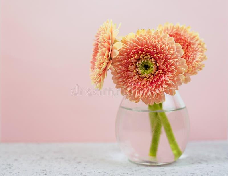 Rosa blommor för härlig vår på den blåa pastellfärgade tabellen i en vas blom- kant royaltyfria bilder
