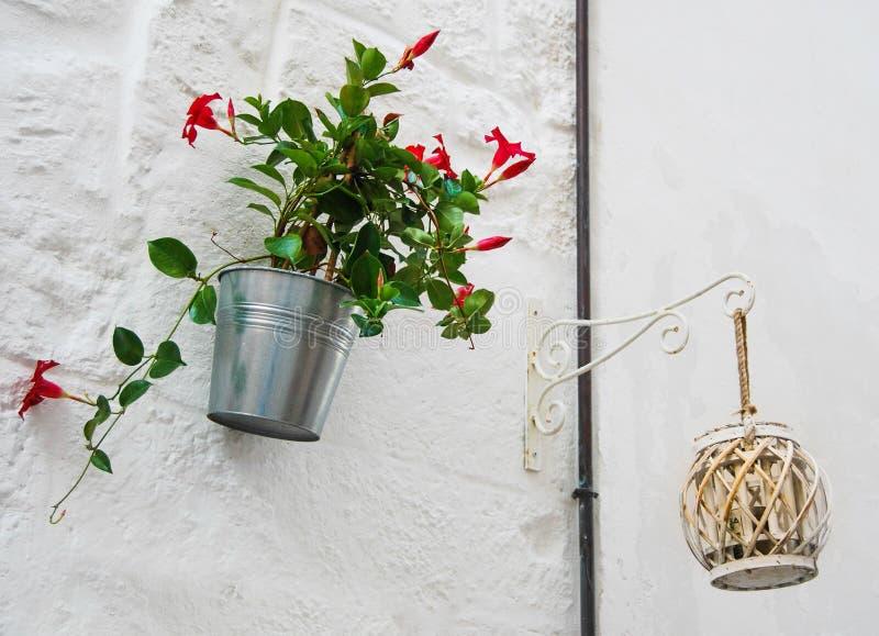 Rosa Blumen und Licht auf der Wand eines weißen Hauses lizenzfreie stockfotografie