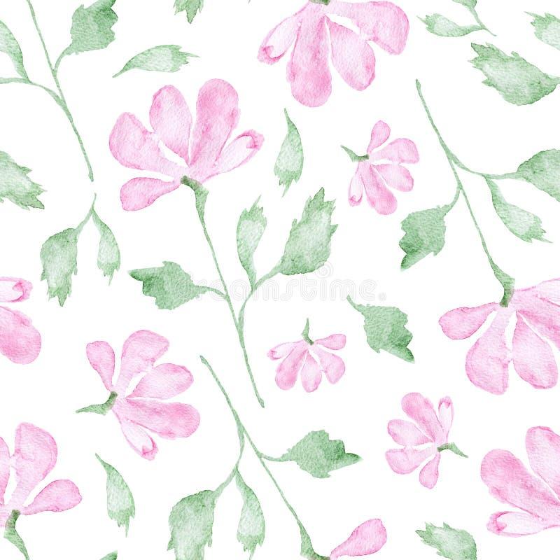 Rosa Blumenaquarellmalerei - Handgezogenes nahtloses Muster mit Blüte auf weißem Hintergrund lizenzfreie abbildung