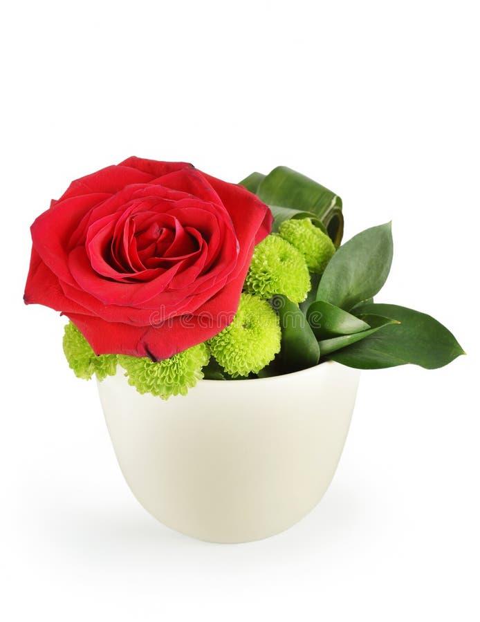 Rosa bonita do vermelho em um potenciômetro