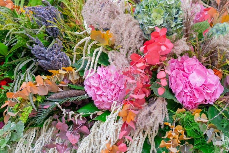 Rosa bonito, flores azuis e ervas foto de stock royalty free