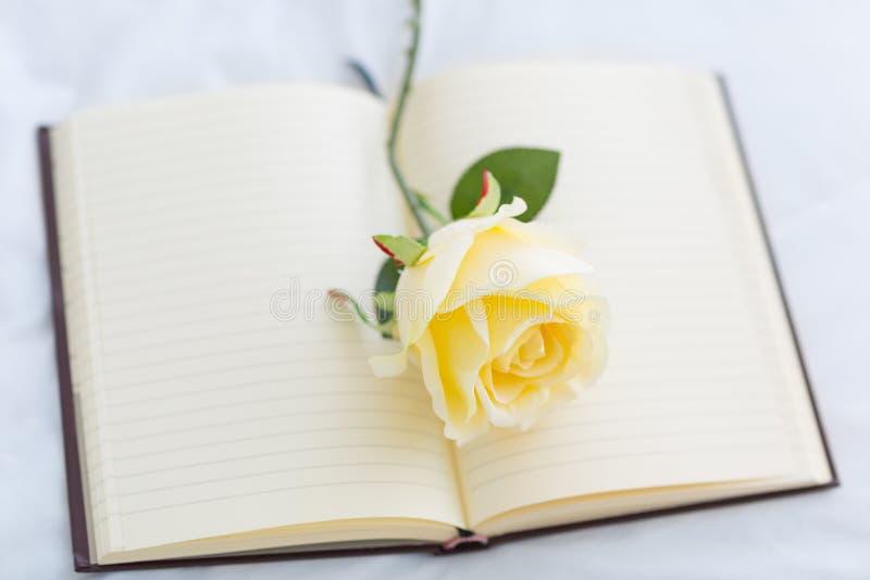 Rosa branca no caderno vazio aberto foto de stock