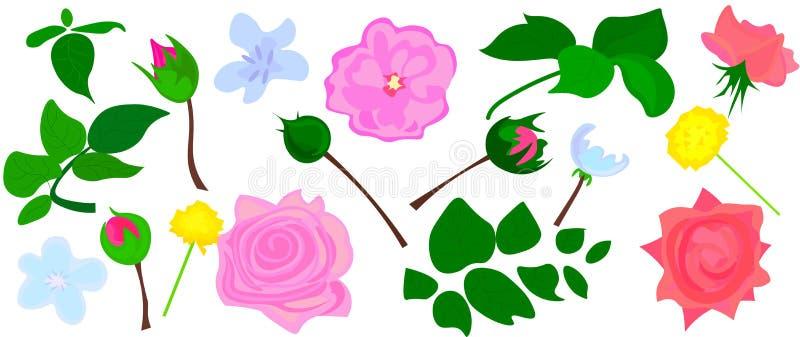 Rosa, branco e pe?nia vermelha de Borgonha, protea, orqu?dea violeta, hort?nsia, flores da camp?nula e mistura de plantas e de er ilustração do vetor