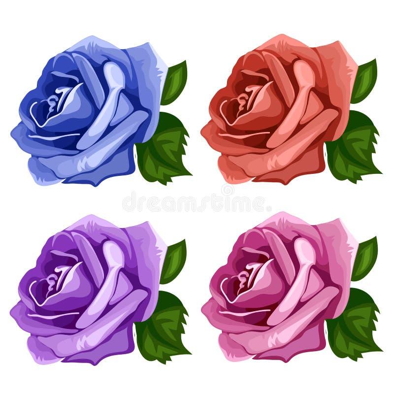 Rosa brota azul, cor-de-rosa, o roxo e o vermelho Vetor ilustração do vetor
