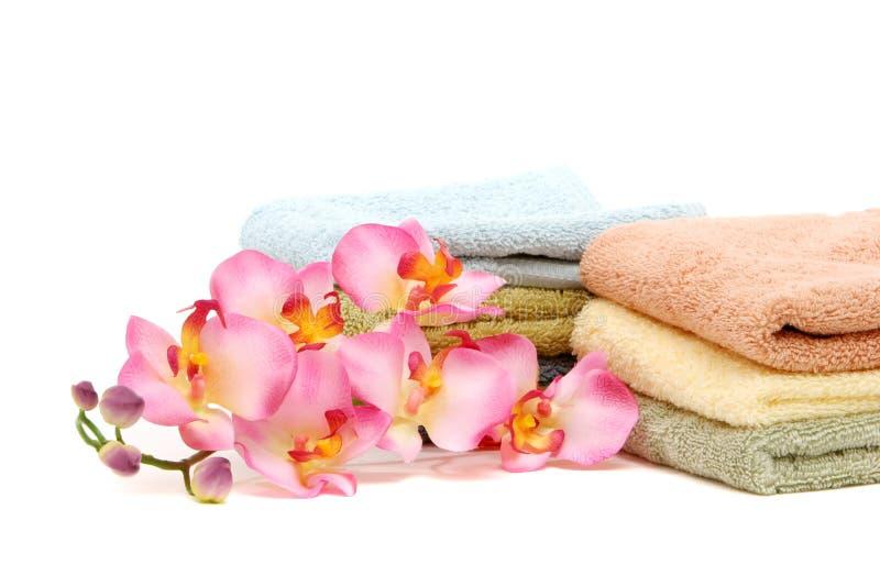 rosa brunnsorthanddukar för orchid arkivbilder