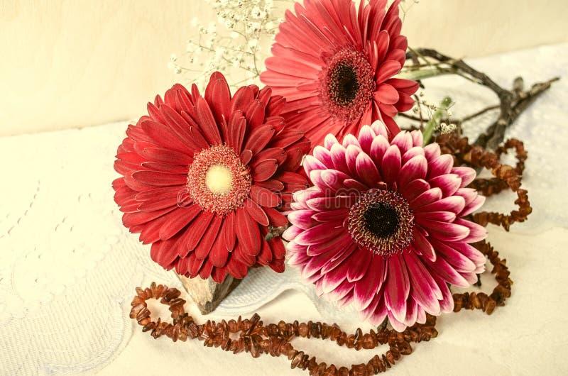Rosa Burgunder und roter Gerbera mit bernsteinfarbigen Perlen sind auf Spitzestoff stockfoto