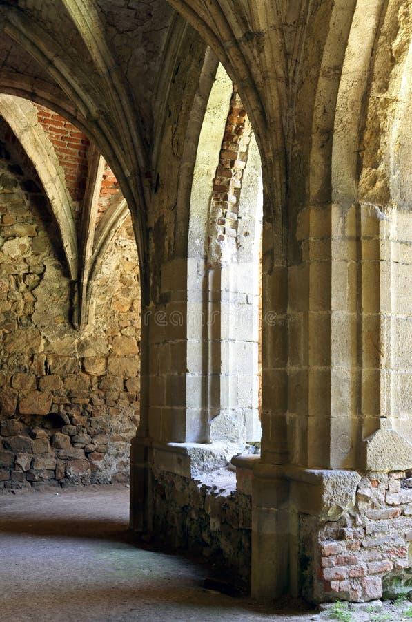 Download Rosa Coeli stock photo. Image of sunny, gothic, kounice - 14630136