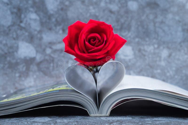Rosa colocou na página dos livros que é dobrada em uma forma do coração imagem de stock royalty free