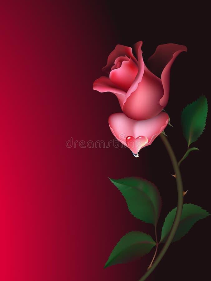 Rosa con goccia dell'acqua royalty illustrazione gratis