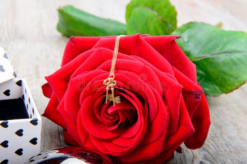 Rosa con un piccolo gioiello per il giorno di S. Valentino immagini stock libere da diritti