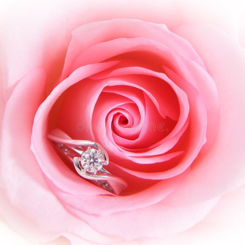 Rosa cor-de-rosa romântica com anel de casamento do diamante fotografia de stock royalty free