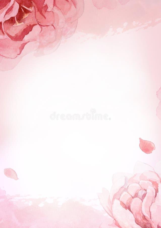 Rosa da aquarela, rosa, e peônias vermelhas no fundo cor-de-rosa para a GR ilustração stock