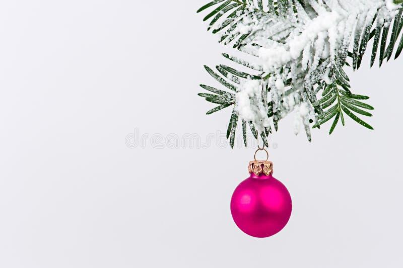 Rosa da decoração do Natal fotos de stock royalty free