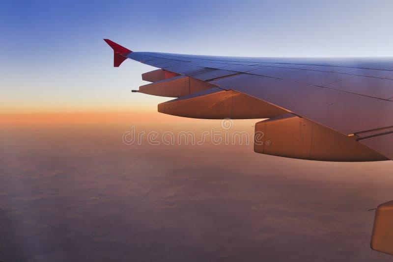 Rosa de la subida del ala del aeroplano imagenes de archivo