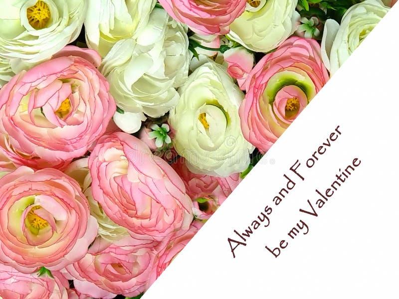 Rosa de rosas hermoso de la tarjeta feliz de Valentine Day Greetings y blanco floral blanco coralino del rosa del ramo del día de imágenes de archivo libres de regalías