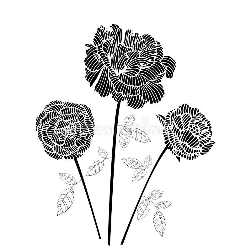 Rosa del negro ilustración del vector
