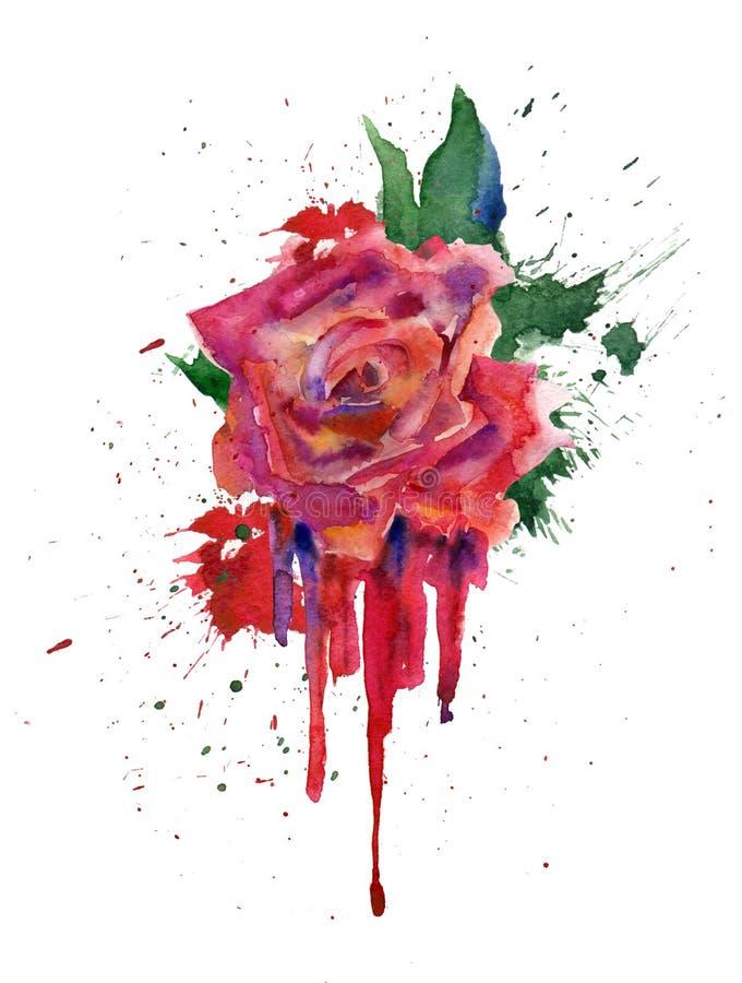 Rosa del rojo de la acuarela libre illustration