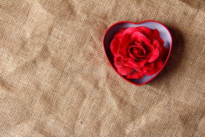 Rosa del rojo en caja del hierro imagenes de archivo