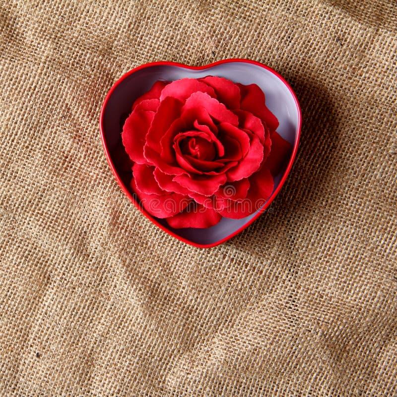 Rosa del rojo en caja del hierro fotografía de archivo libre de regalías