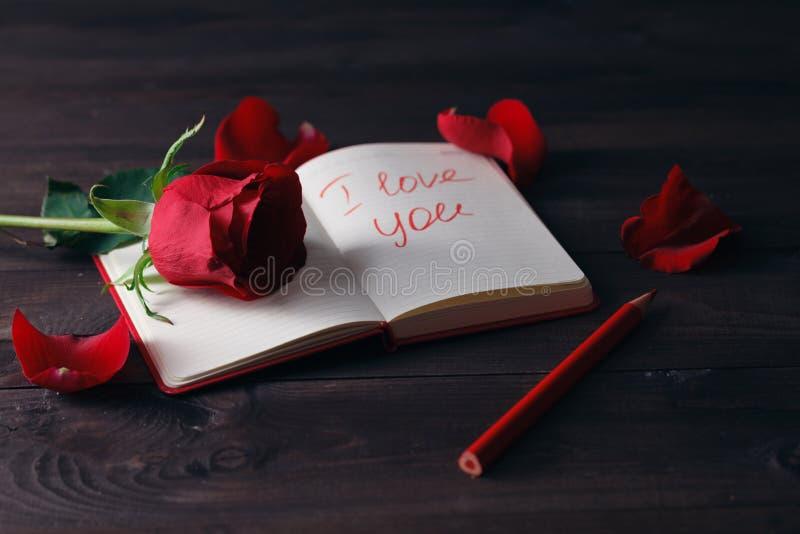 Rosa del rojo en el primer abierto del libro fotografía de archivo