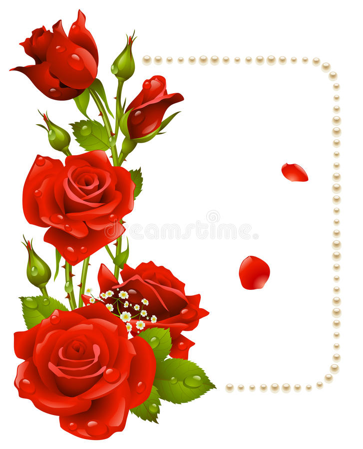 Rosa Del Rojo Y Marco De Las Perlas Ilustración del Vector ...