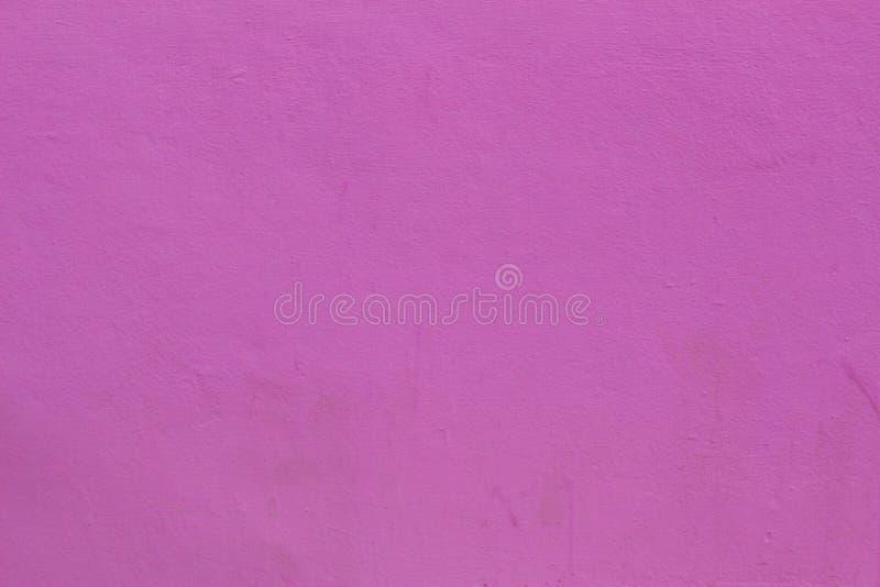 Rosa della parete del fondo fotografia stock
