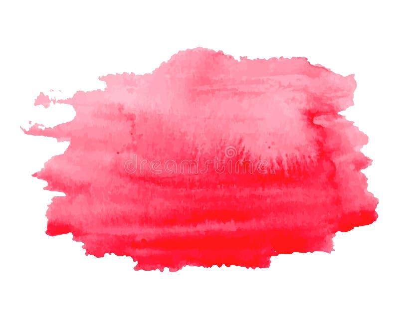 Rosa des Aquarells helle, rote Hand gezeichnete Beschaffenheit, lokalisiert auf weißem Hintergrund, Vektor lizenzfreie abbildung