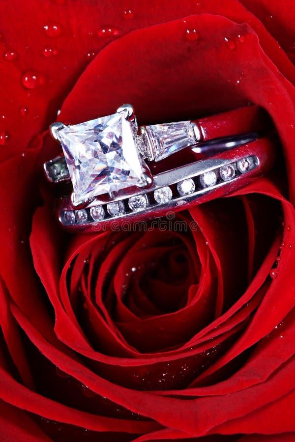 Rosa di colore rosso ed anelli di diamante immagine stock