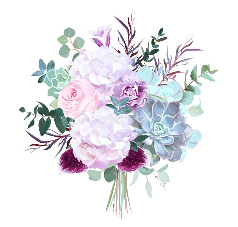 Rosa di rosa, ortensia bianca, garofano porpora, orchidea scura, succu illustrazione di stock