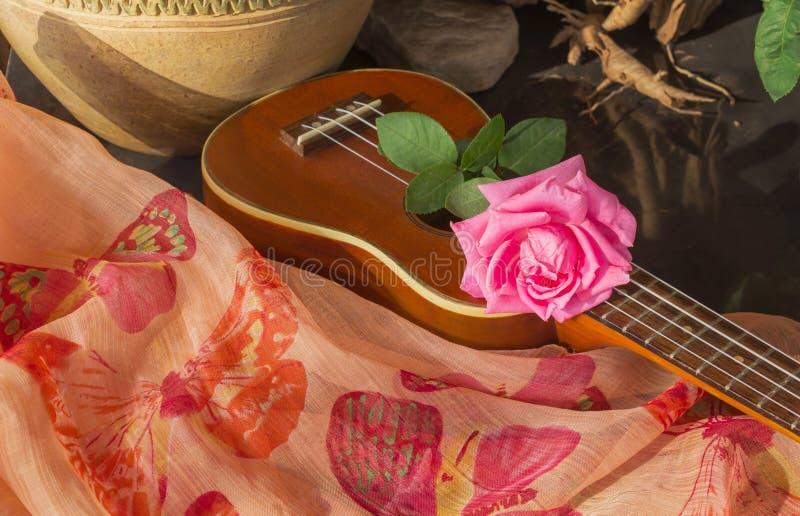 Rosa di rosa sulle ukulele nello stile del boutique immagine stock libera da diritti