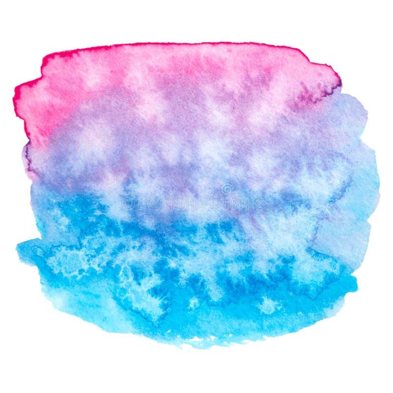 Rosa di vettore e struttura blu della pittura isolati sull'insegna bianco- dell'acquerello per la vostra progettazione royalty illustrazione gratis