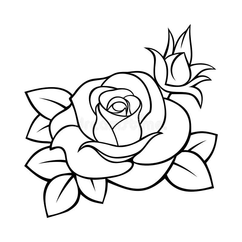 Rosa Disegno in bianco e nero di contorno di vettore illustrazione vettoriale