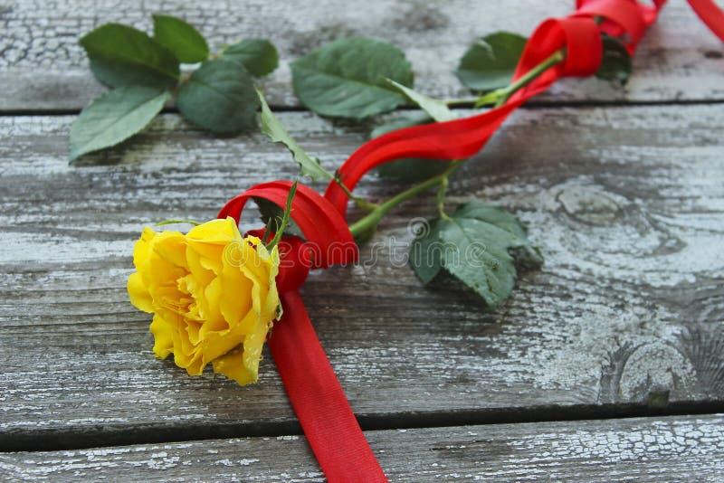 Rosa do amarelo com fita vermelha imagem de stock