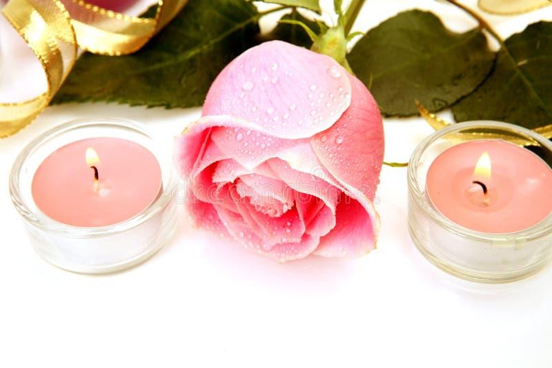 Download Rosa do rosa imagem de stock. Imagem de levantou, beleza - 26512261