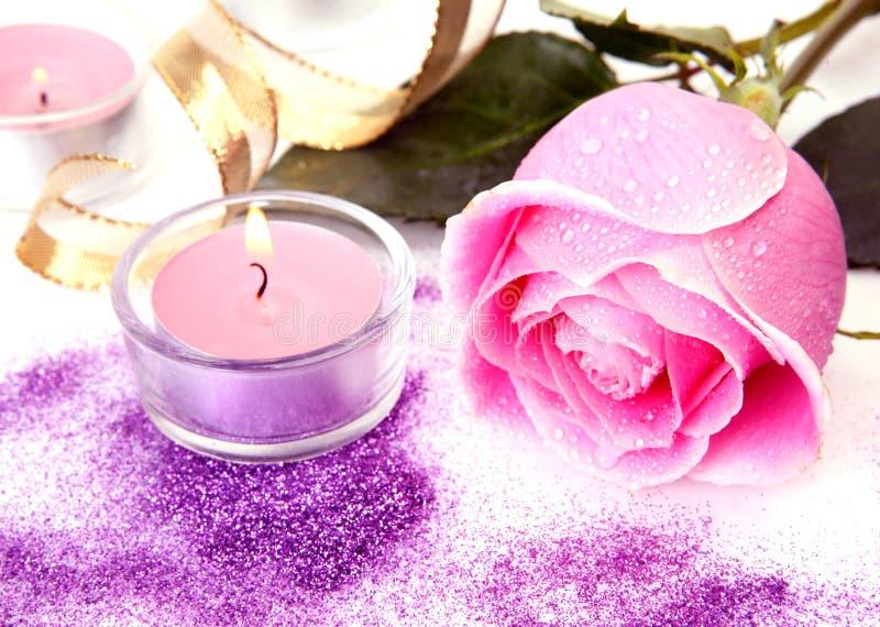 Download Rosa do rosa imagem de stock. Imagem de cor, amor, flora - 26512301